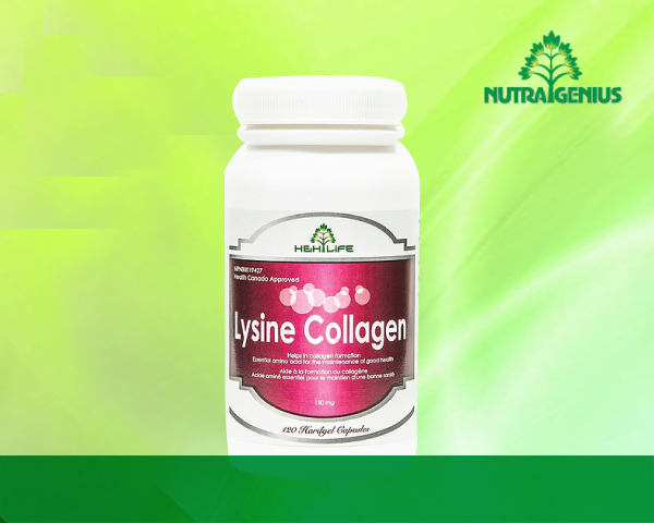 Lysine Collagen copy