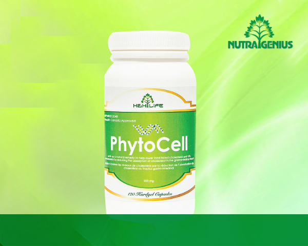 PhytoCell copy